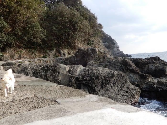 海沿いを散歩できます
